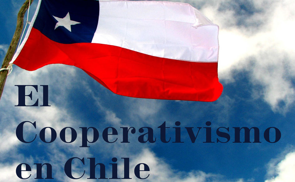 Diagnóstico del Cooperativismo en Chile, por el Ministerio de Economía, Fomento y Turismo de Chile