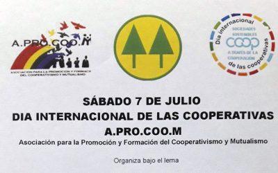 Caminata en Santiago del Estero por el Día Internacional de las Cooperativas