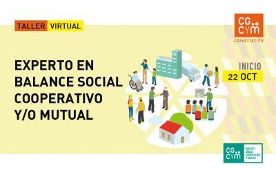 Experto en Balance Social Cooperativo y/o Mutual